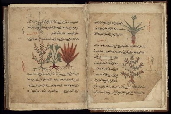 Manoscritto arabo