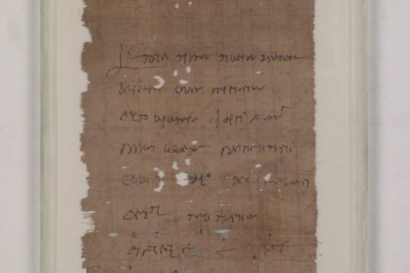 Papyri Bononienses